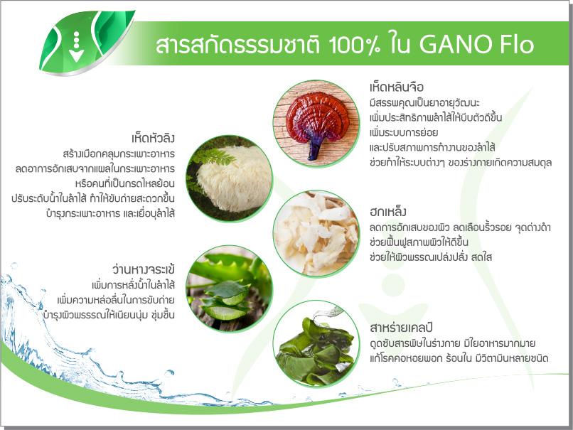 GANO_P06_2